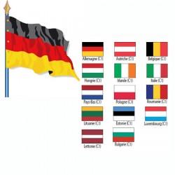 Drapeau de pays de l'UE Cat 1 115 g sur hampe en bois 40 x 60 cm