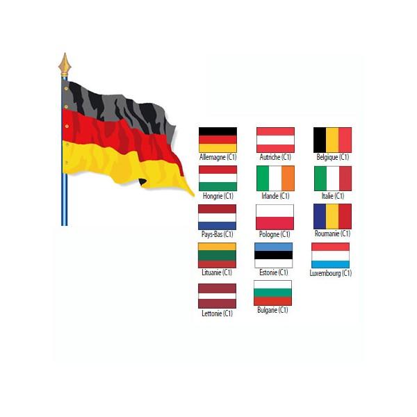 Drapeau de pays de l'UE Cat 1 115 g sur hampe en bois 80 x 120 cm