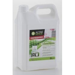 Lessive liquide concentrée Ecolabel en bidon de 5L (le lot de 2)