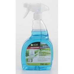 Nettoyant vitre et surfaces modernes Ecolabel en spray 750 ml (le lot de 6)