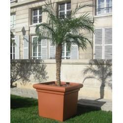 Pot carré lisse emboitable 71x71xH65 cm 310L